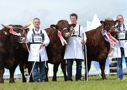 RES. INTERBREED GROUP AT BALMORAL