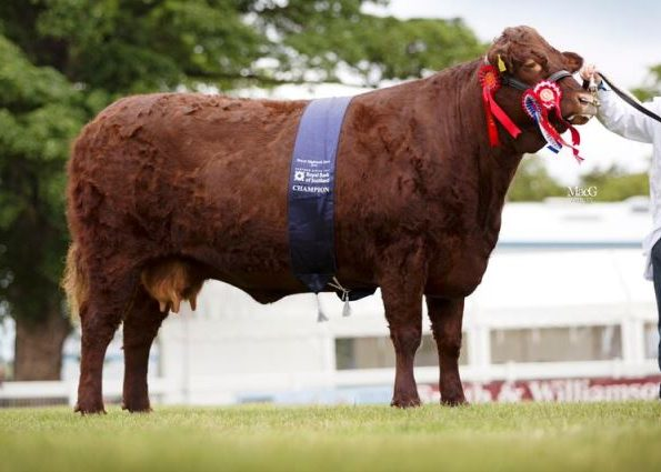 2015 ROYAL HIGHLAND SHOW INGLISTON