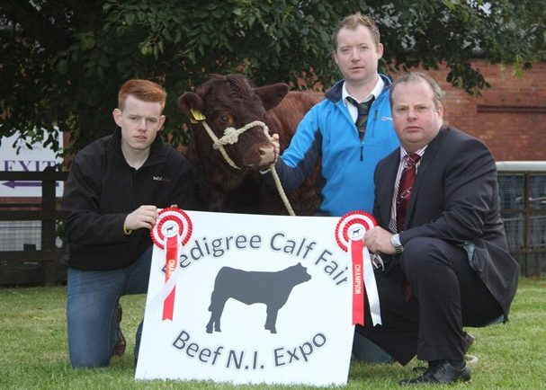 BEEF EXPO NI AND CALF FAIR 2015