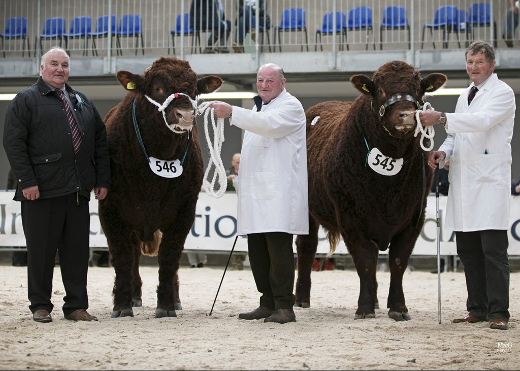 2017 STIRLING BULL SALE 1st MAY