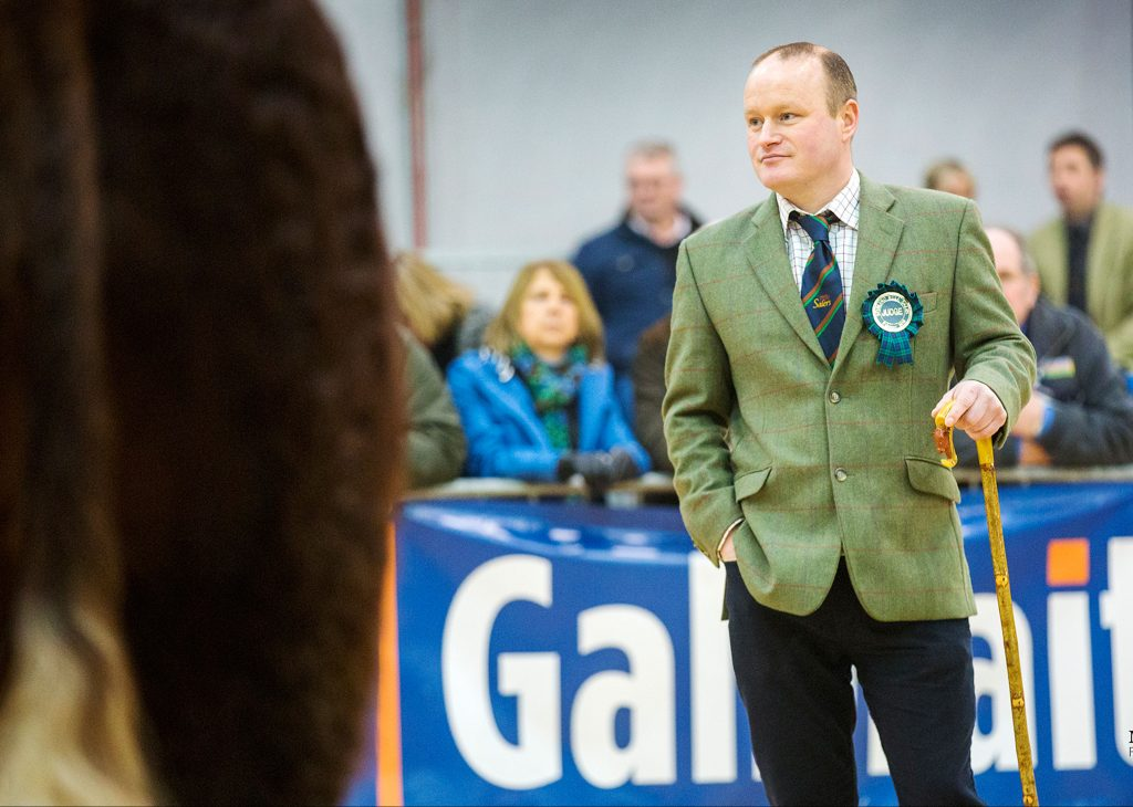 2018 STIRLING BULL SALES 19th FEBRUARY