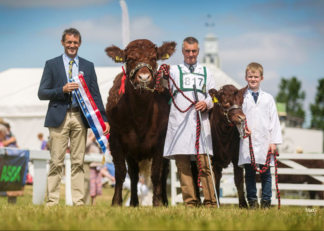 2018 GREAT YORKSHIRE SHOW HARROGATE