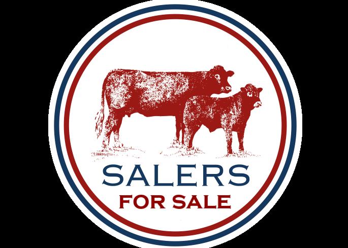 SEMEN FOR SALE – COLAND SALERS