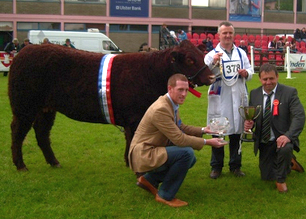 Read more about the article HEIFER WOWS JUDGE AT BALMORAL SHOW 2011