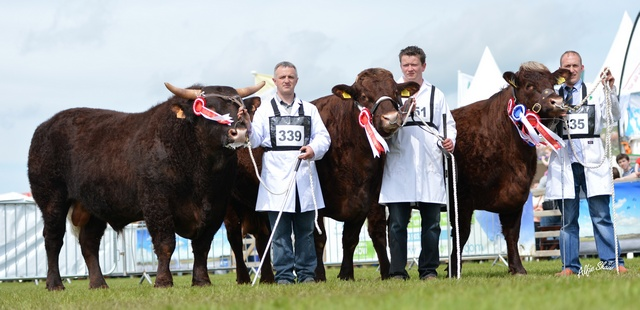 Reserve interbreed group of three