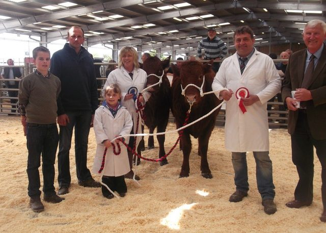 Read more about the article 4500gns TOP PRICE AT WELSHPOOL