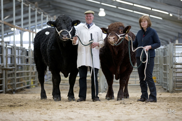 Rigel Discovery, 5000gns and Rigel