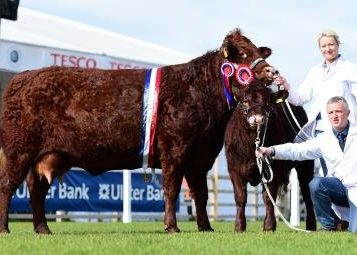 Read more about the article 2015 BALMORAL SHOW (RUAS)