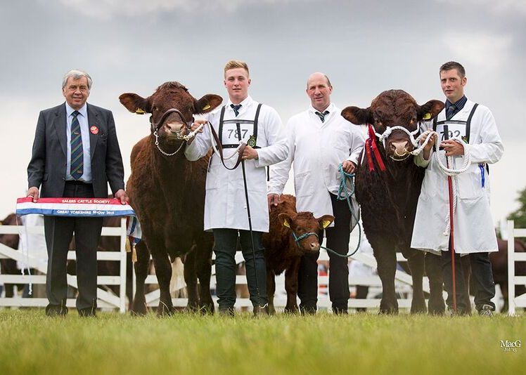 Read more about the article 2015 GREAT YORKSHIRE SHOW HARROGATE