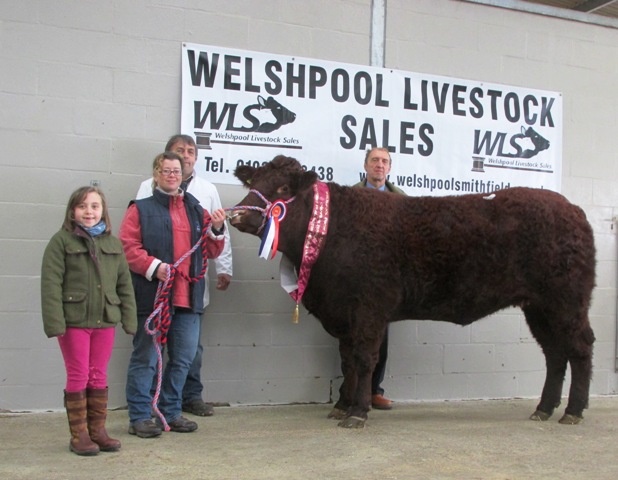 Champion and Top Price Female Felin Infinity with Harri and Lora Pritchard and sponsor Rachel Jones from Allington Hughes Law