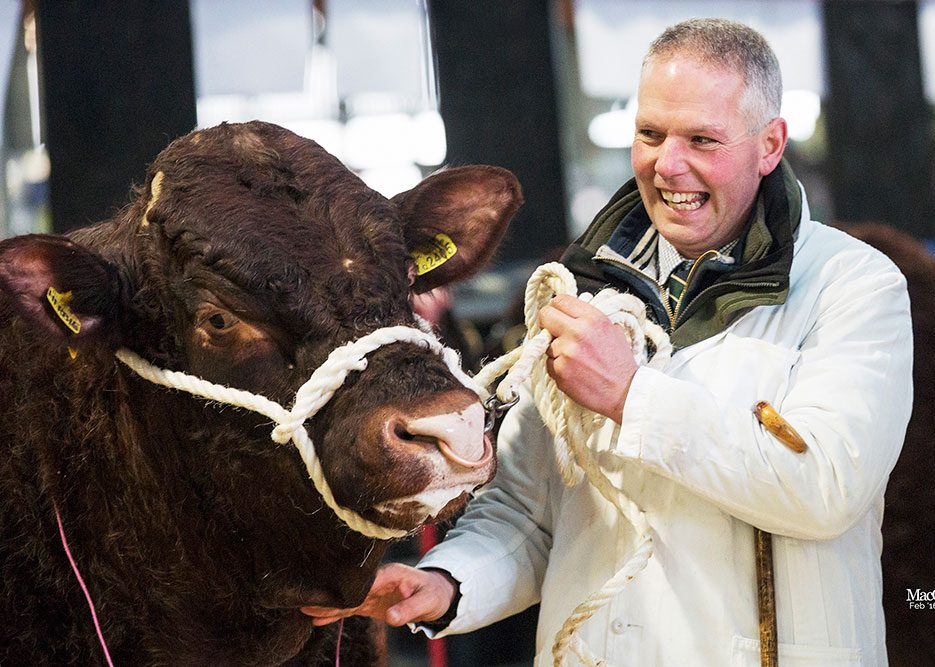 Read more about the article 2016 STIRLING BULL SALES FEBRUARY