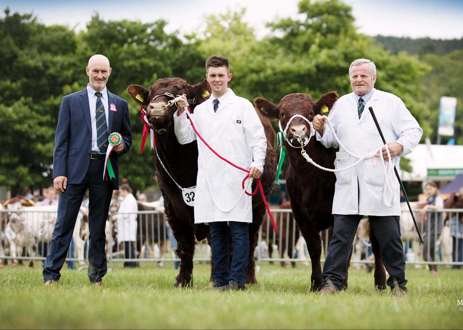 Read more about the article 2018 ROYAL WELSH SHOW LLANELWEDD