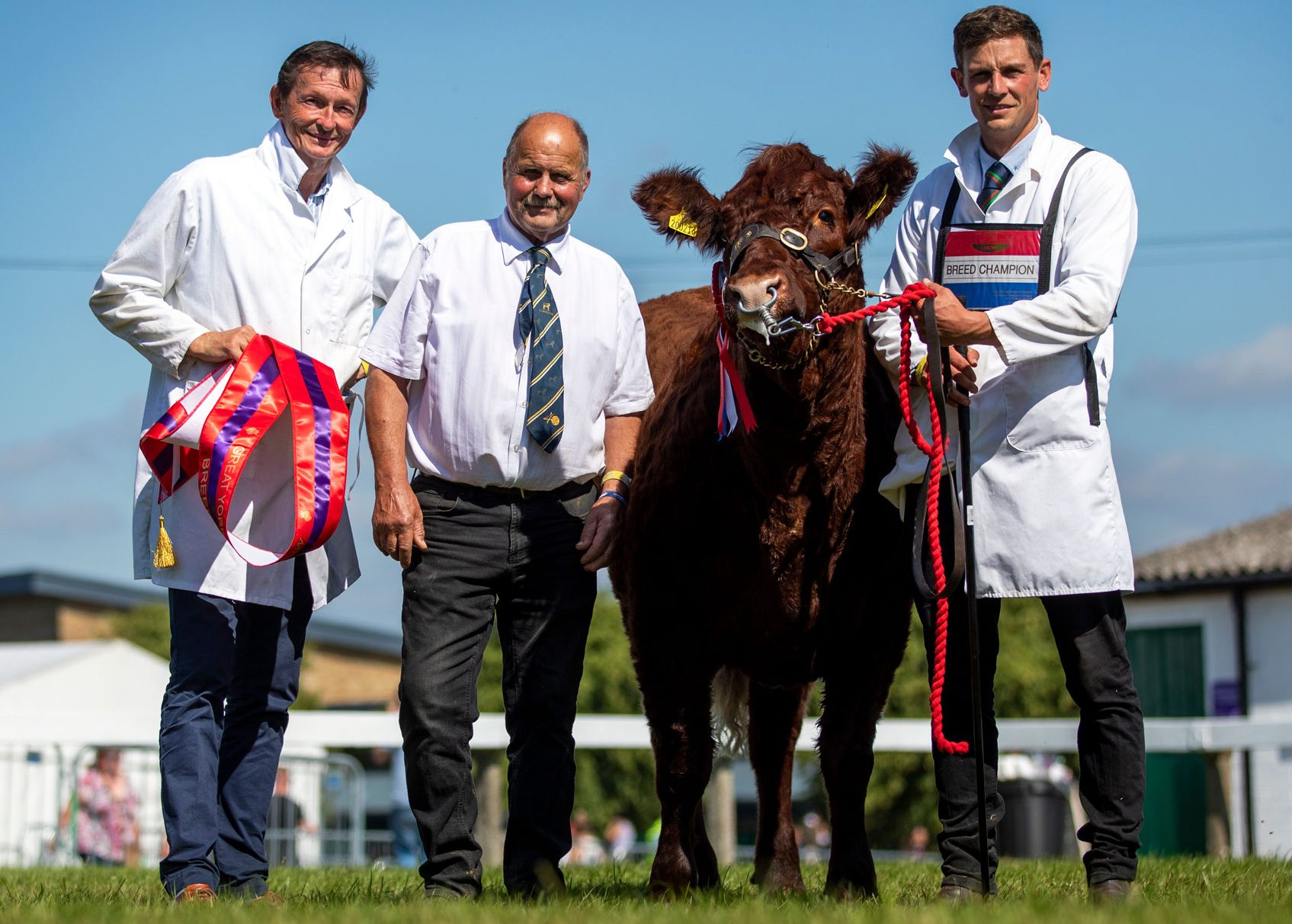 Read more about the article GENTONS PASHA POLL VICTORIOUS AT GYS